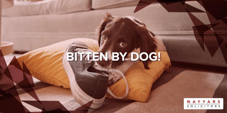 Bitten by a Dog